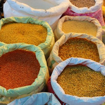 Technical Assistance and Research for Indian Nutrition and Agriculture