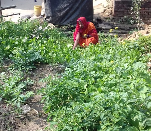 woman working in kitchen garden